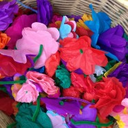 Blumen für Nepal