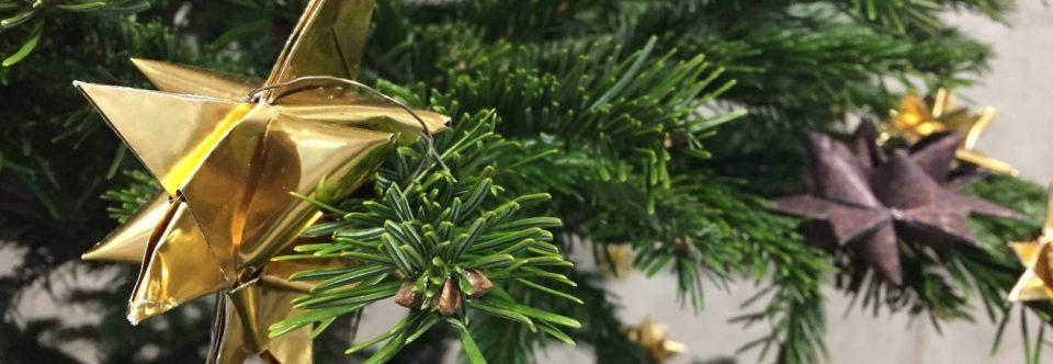 Ein schicker Baum für die Marie-Kahle-Gesamtschule